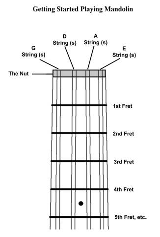 Mandolin Tuning Diagram Diy Enthusiasts Wiring Diagrams